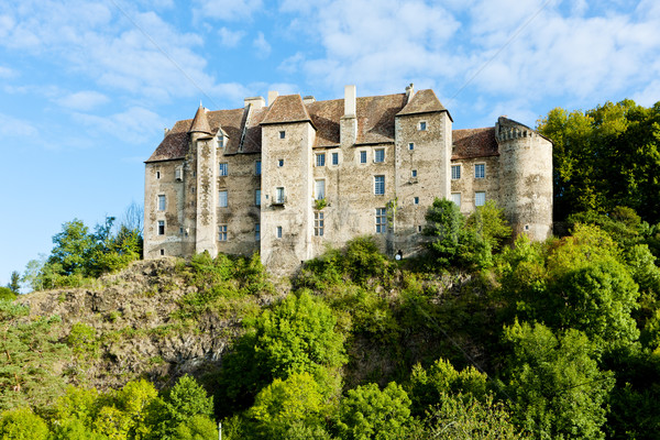 Ancient French Building With Beautiful Architectural Design Surrounded By Greenery On A Hilly Slide